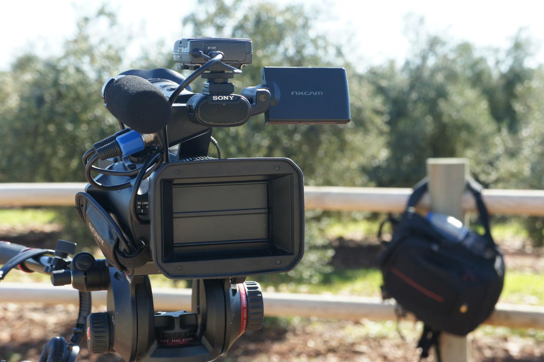 Cameraman Andalusia